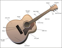 Diagram of the Guitar