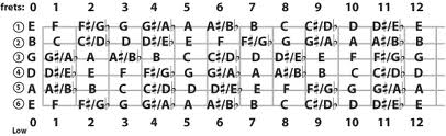 Twelve notes of the chromatic scale