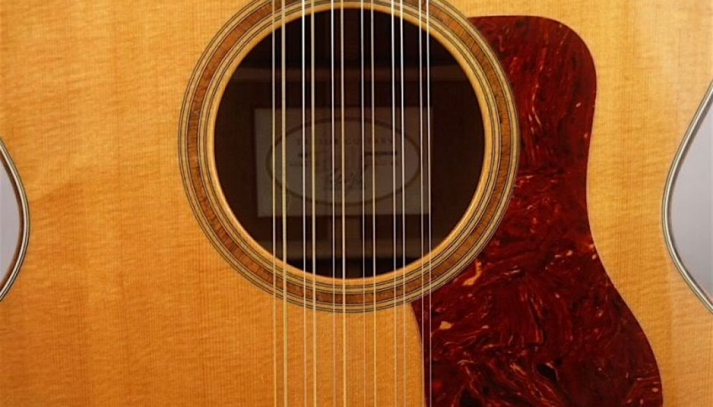 what are some good alternate tunings for a twelve string guitar noise. Black Bedroom Furniture Sets. Home Design Ideas