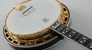 Introduction to the 5-String Banjo