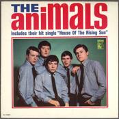 Animals album cover