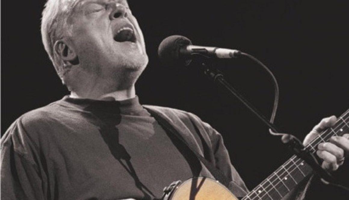 David Gilmour in concert
