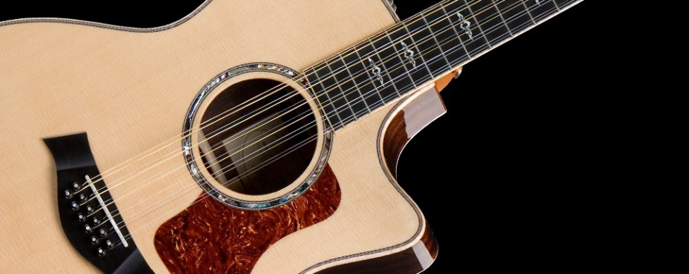 double your pleasure a guide to the twelve string guitar guitar noise. Black Bedroom Furniture Sets. Home Design Ideas