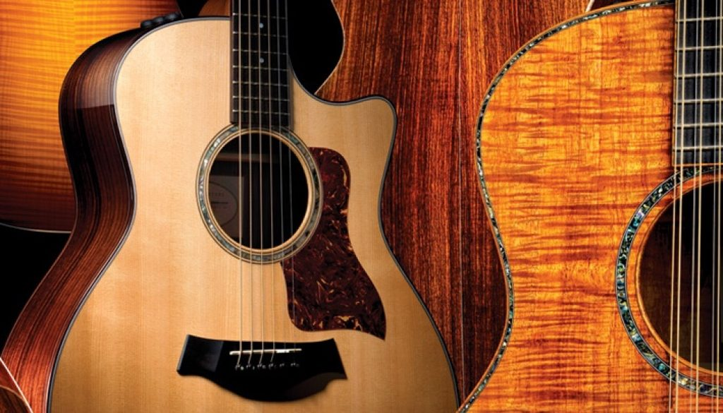 Learn to play acoustic guitar books